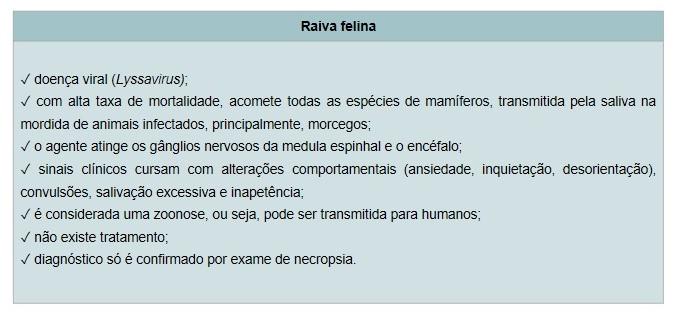 Raiva Felina
