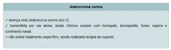 Adenovirose Canina - Vacinas para Cachorros